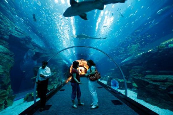 Quels sont les plus grands aquariums de France ?